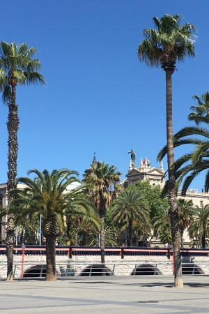 LEEM Wonen Barcelona kust beach palm trees