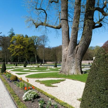 Blogtour Gelderland tuinen Paleis het Loo boom Ontwerpgeheimen