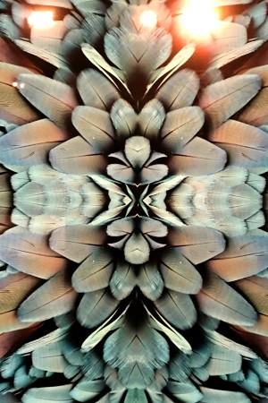 LEEM Wonen fotokunst UMO Art Gallery foto op acryl