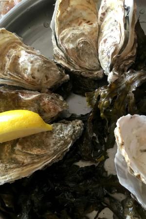 LEEM Wonen Bretagne Cancale lunch seafood