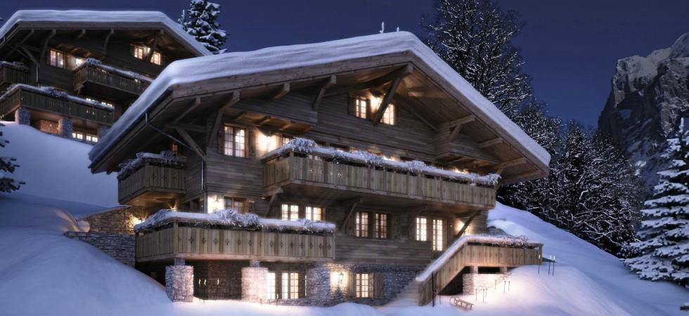 LEEM Wonen gletsjer dorpje Grindelwald by night