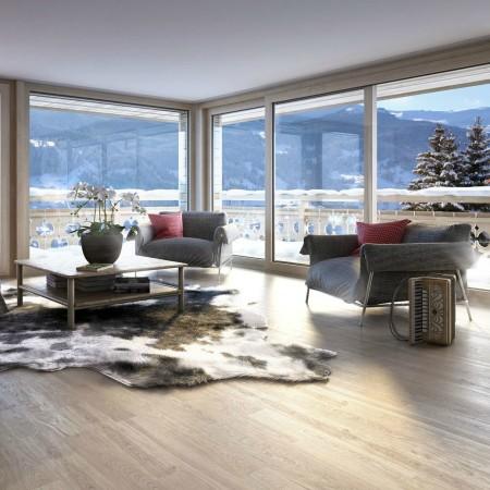 LEEM Wonen gletsjer dorpje Grindelwald windows