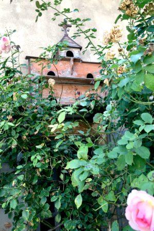 LEEM WONEN Vakantie 2017 Chateau St Vincent roses